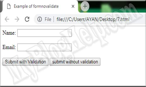 formnovalidate input attribute example