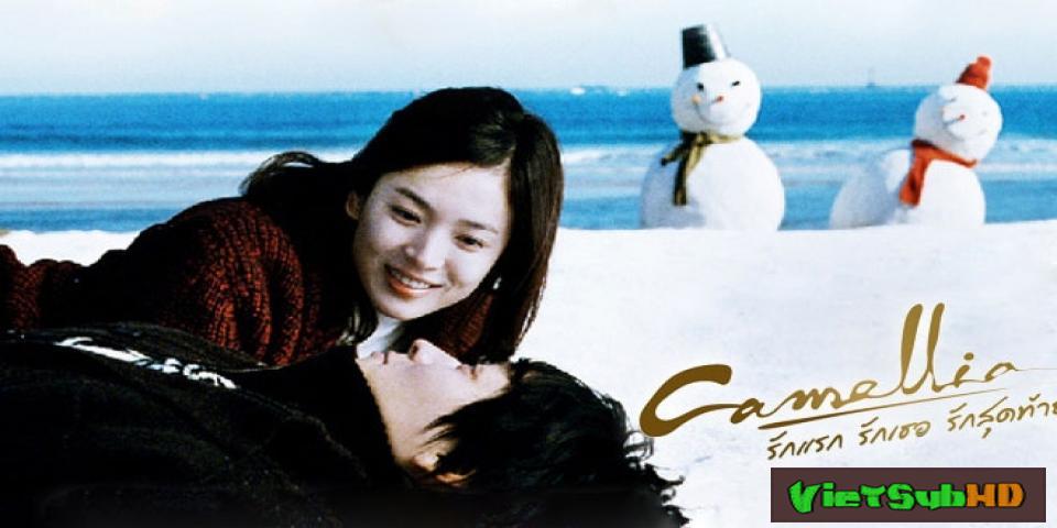 Phim Hoa Sơn Trà (mua Bán Tình Yêu) VietSub HD | Love For Sale (camellia) 2011