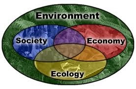 Environmental And Natural Resource Economics Definition