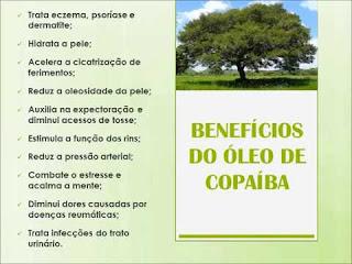 https://saudeharmoniaequilibrio.blogspot.com.br/