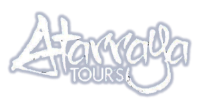 Travel atarraya tours/Agencia de viaje virtual