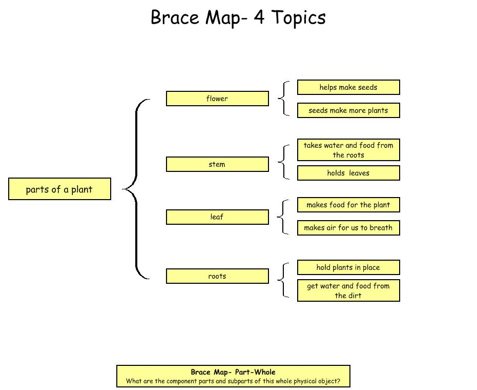 Bishop 39 s blackboard an elementary education blog plant for Brace map template