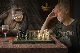 homem e macaco jogando xadrez