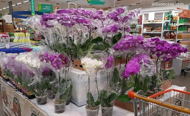 flores-expostas-em-gondolas-supermercado