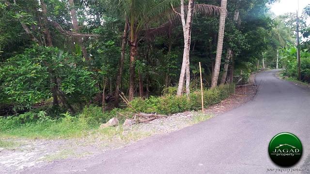 Tanah tepi jalan dekat Polsek Panjatan