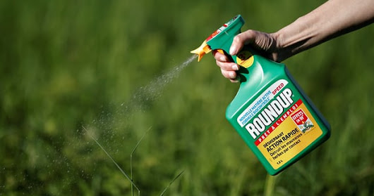 Monsanto Biochemicals Cause Cancers And Sued To Pay $289m