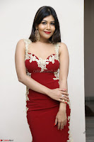 Rachana Smit in Red Deep neck Sleeveless Gown at Idem Deyyam music launch ~ Celebrities Exclusive Galleries 051.JPG