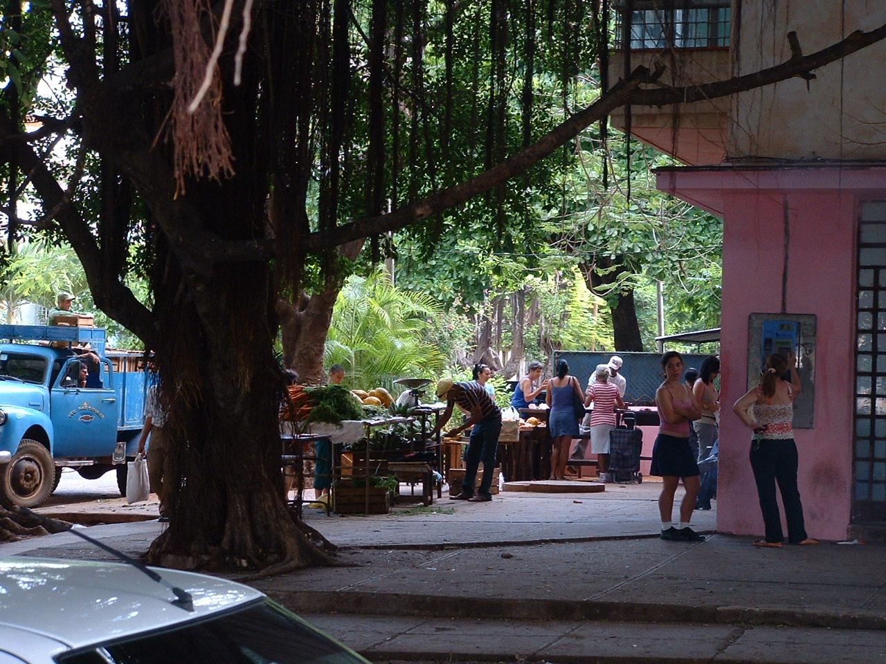 completa.problema. Cambogia Block 130 Mnh 1983 500 Compleanno Di Raphael