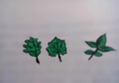 Gambar Apa Itu Klorofil Dan Kenapa Tumbuhan Memiliki Klorofil