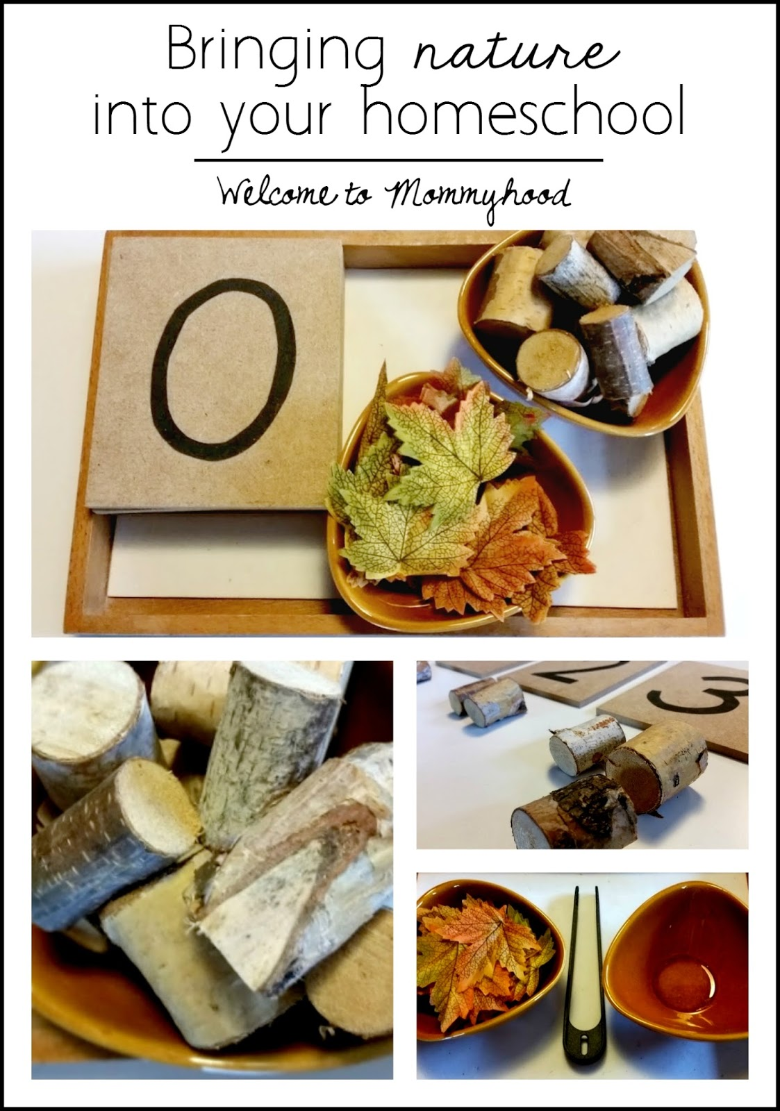 Welcome To Mommyhood Bringing Nature Into Fall Themed Homeschool Activities