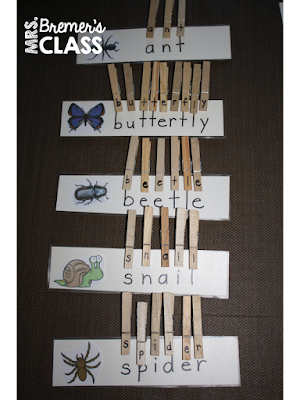 FREE Download Bug clip cards- just add clothespins! A tactile reading activity-perfect in a literacy center!