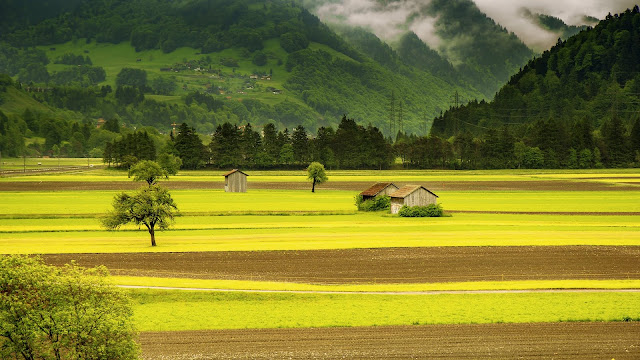 Houses in the Middle of Green Field Grass Near Mountains Rural Life HD Wallpaper