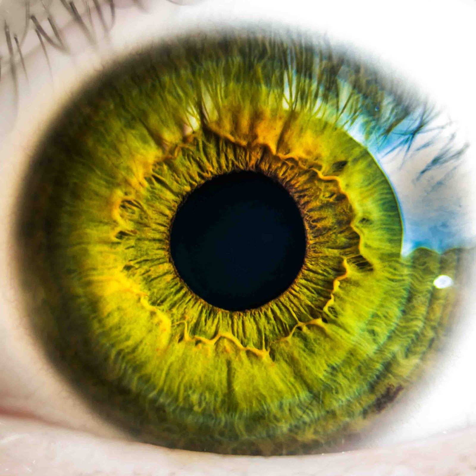 Everyday habits that may cause serious problem for your eye health
