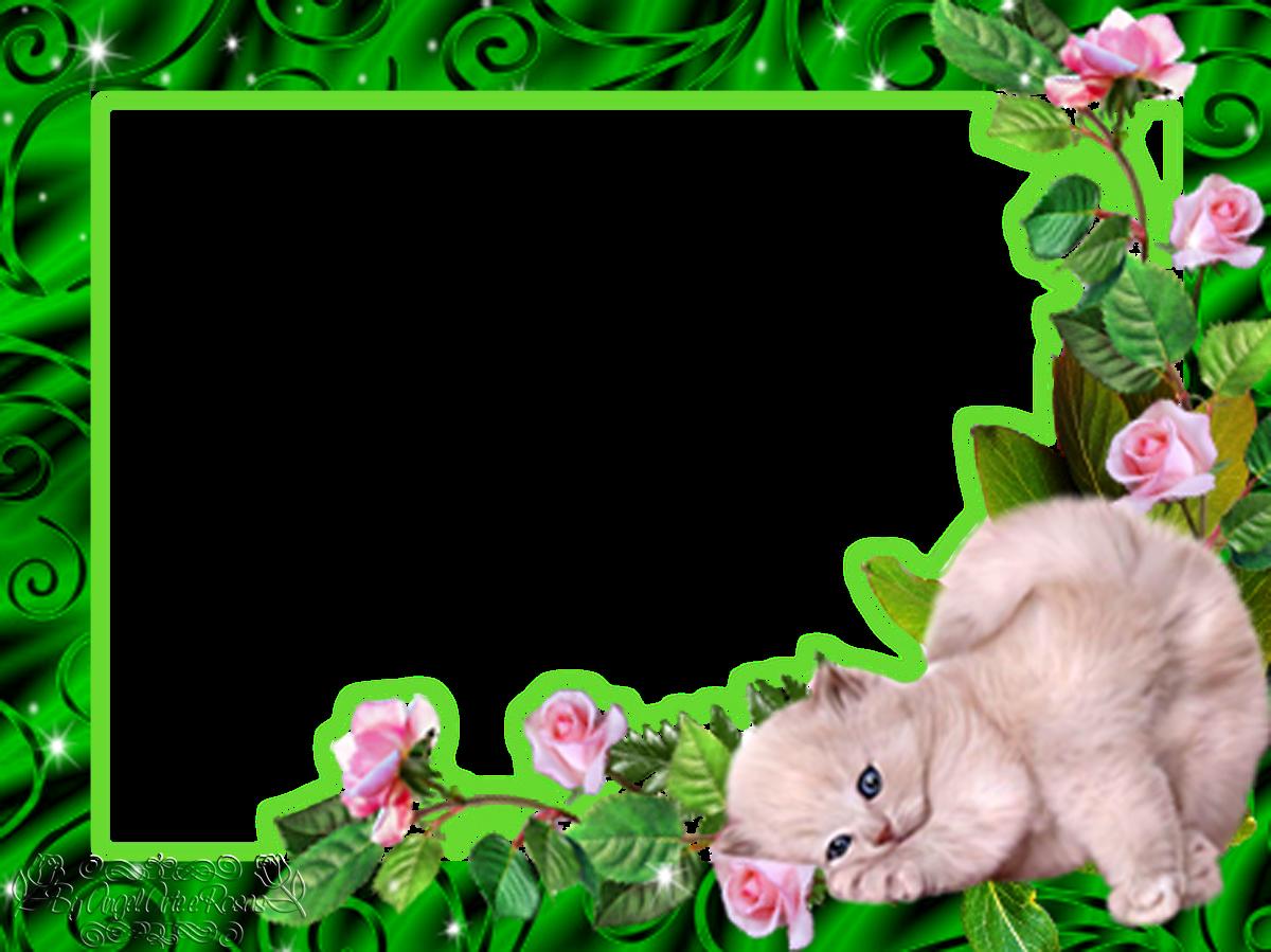 by angel arte e rosas 2 molduras de gatinhos. Black Bedroom Furniture Sets. Home Design Ideas