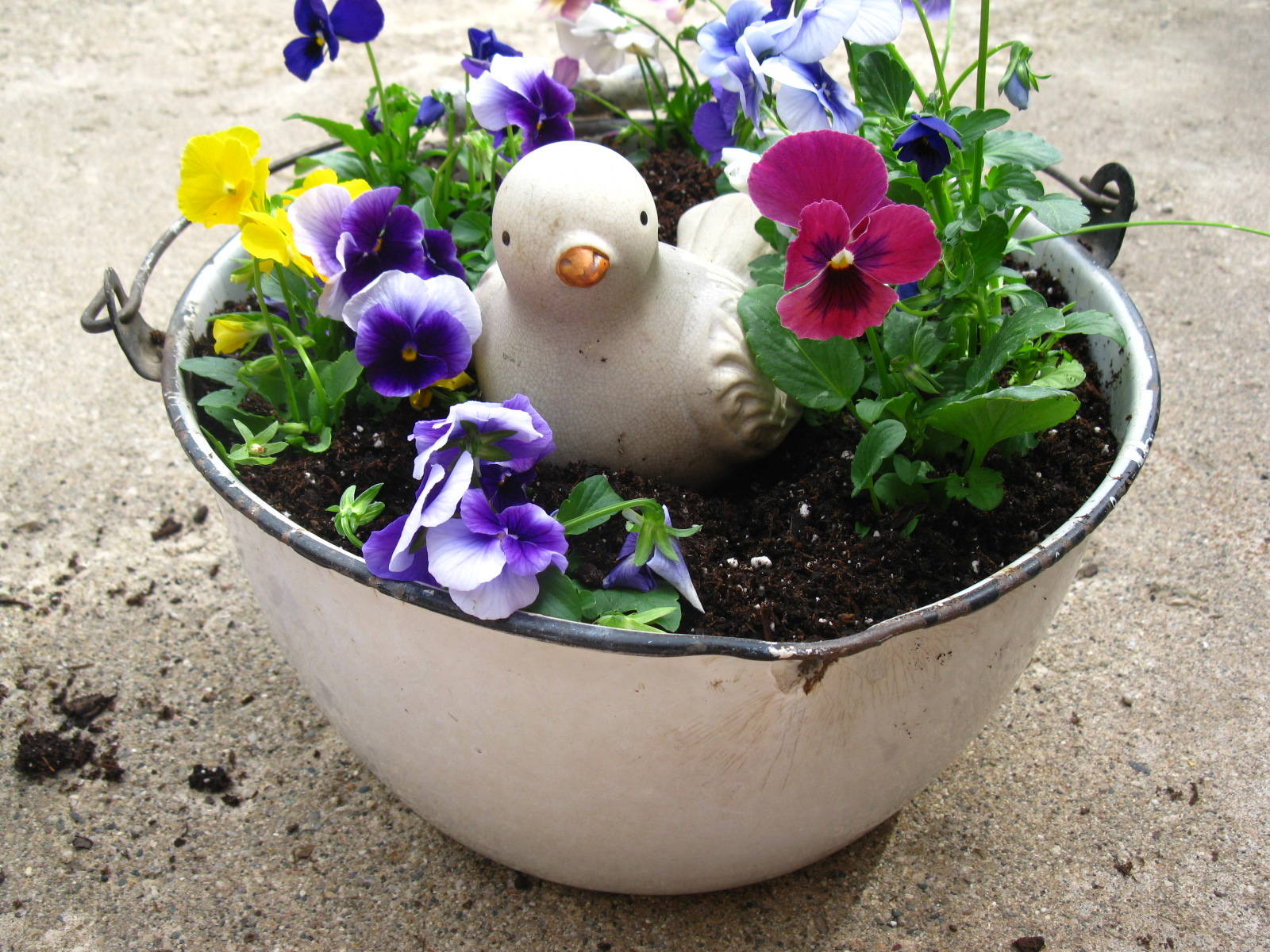 My Sparrows Nest: Shabby Chic Garden