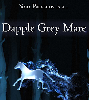 Dapple Grey Mare di Deborah Tamima
