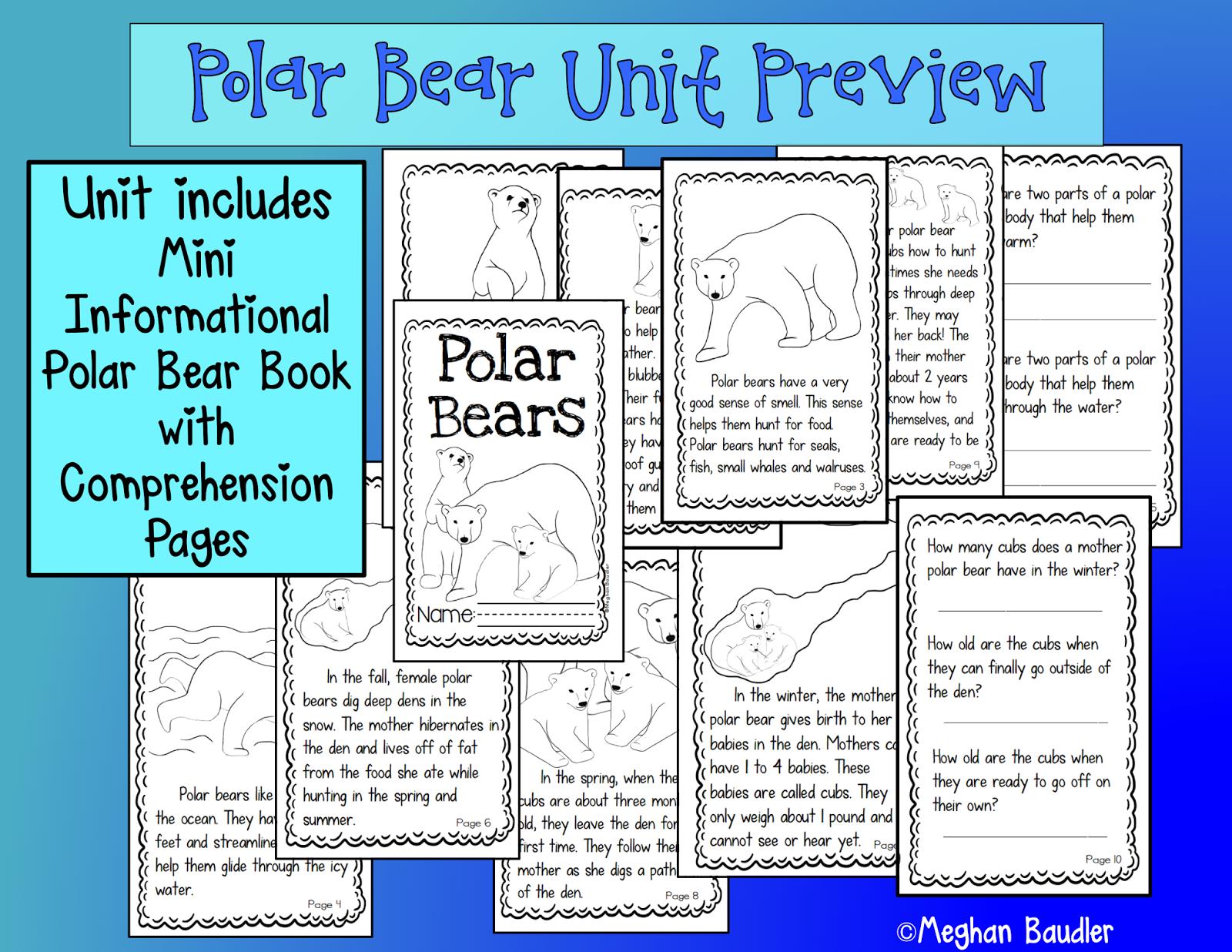 Polar Bear Diagram Vw Beetle Wiring 1976 The Creative Colorful Classroom January 2015