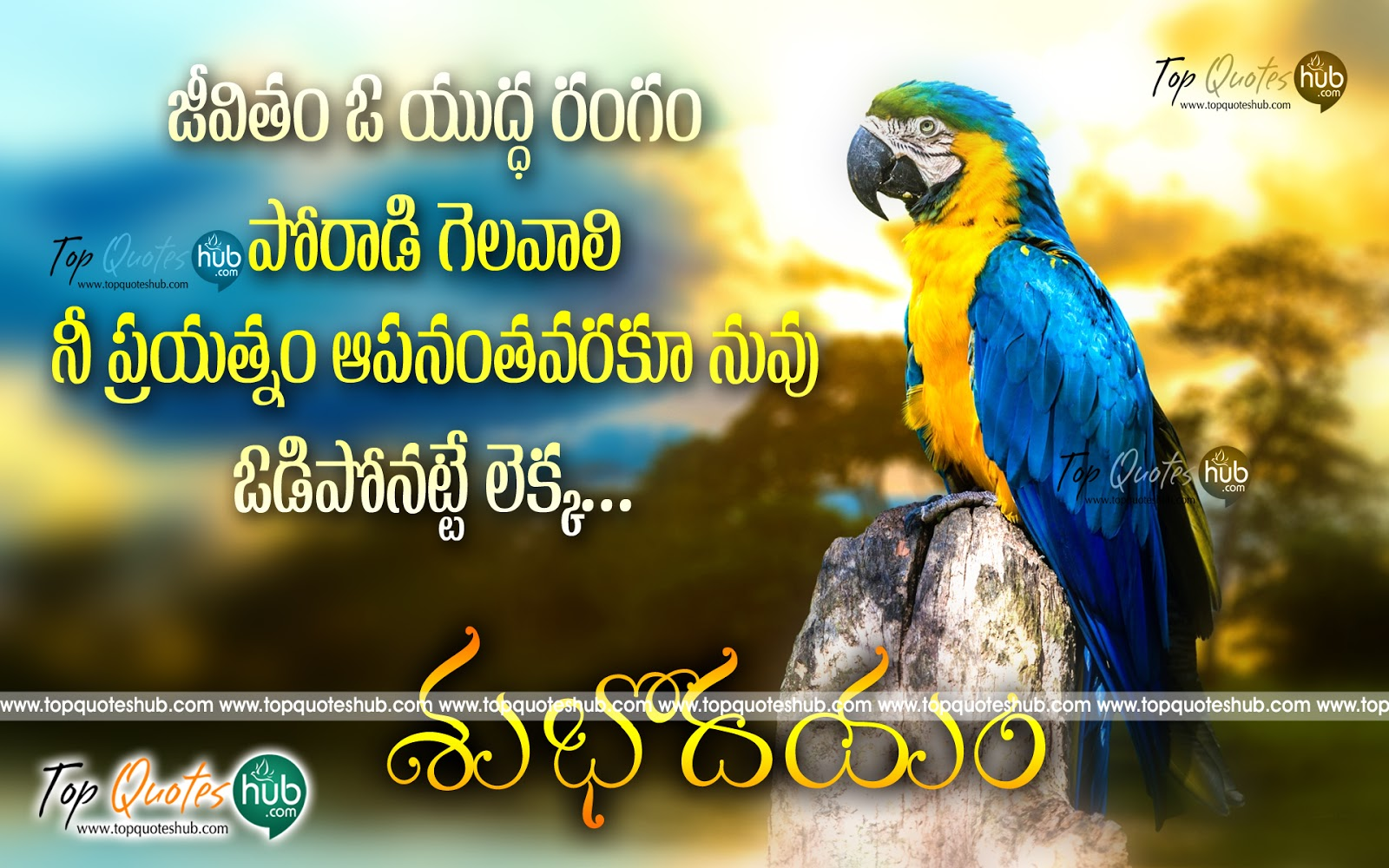 Good Morning Life Quotes In Telugu Archidev