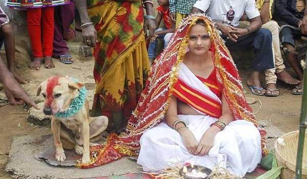 अजीब परंपरा: कुत्तों से करा देते हैं लड़कियों की शादी, जानिए क्यों