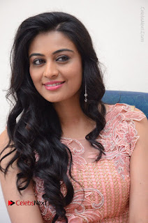 Actress Neha Hinge Stills in Pink Long Dress at Srivalli Teaser Launch  0051.JPG