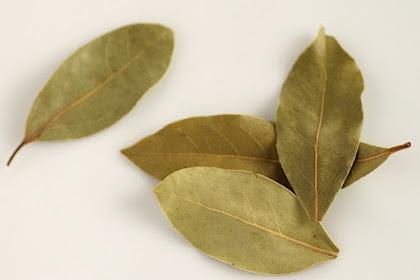 8 Manfaat minum rebusan daun salam untuk pengobatan herbal