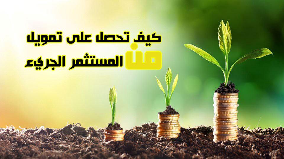 شركات, رأس المال, المغامر, السعودية