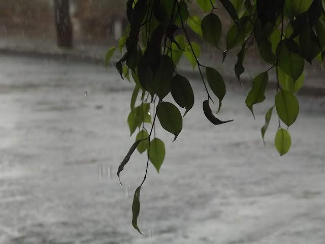 Previsão do Tempo: após calorão, fim de semana vai ter chuva em Pinhal