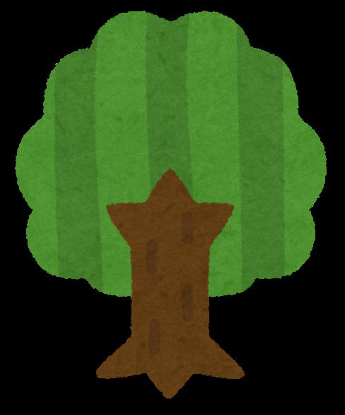 木のイラスト横からと上から かわいいフリー素材集 いらすとや