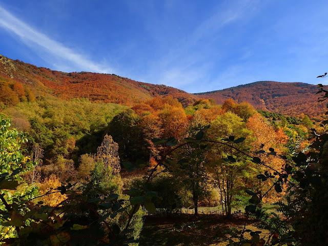 Jesień w jednym z bałkańskich pasm górskich (Macedonia)
