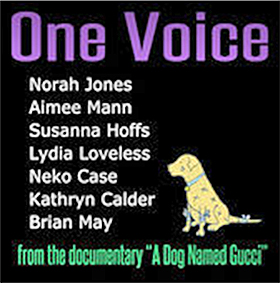 DVD & Blu-ray Release Report, A Dog Named Gucci, Ralph Tribbey