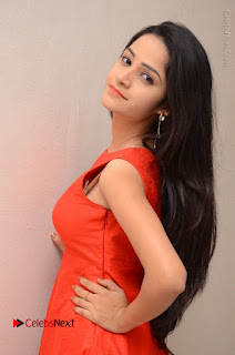 Telugu Actress Divya Nandini Stills in Orange Sleeveless Gown at Chennai Chaitrama Movie le Launch Event  0062.JPG