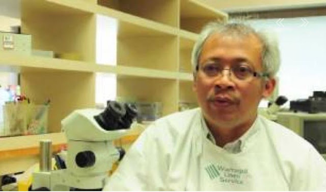 Mulyoto Pangestu, Ph.D