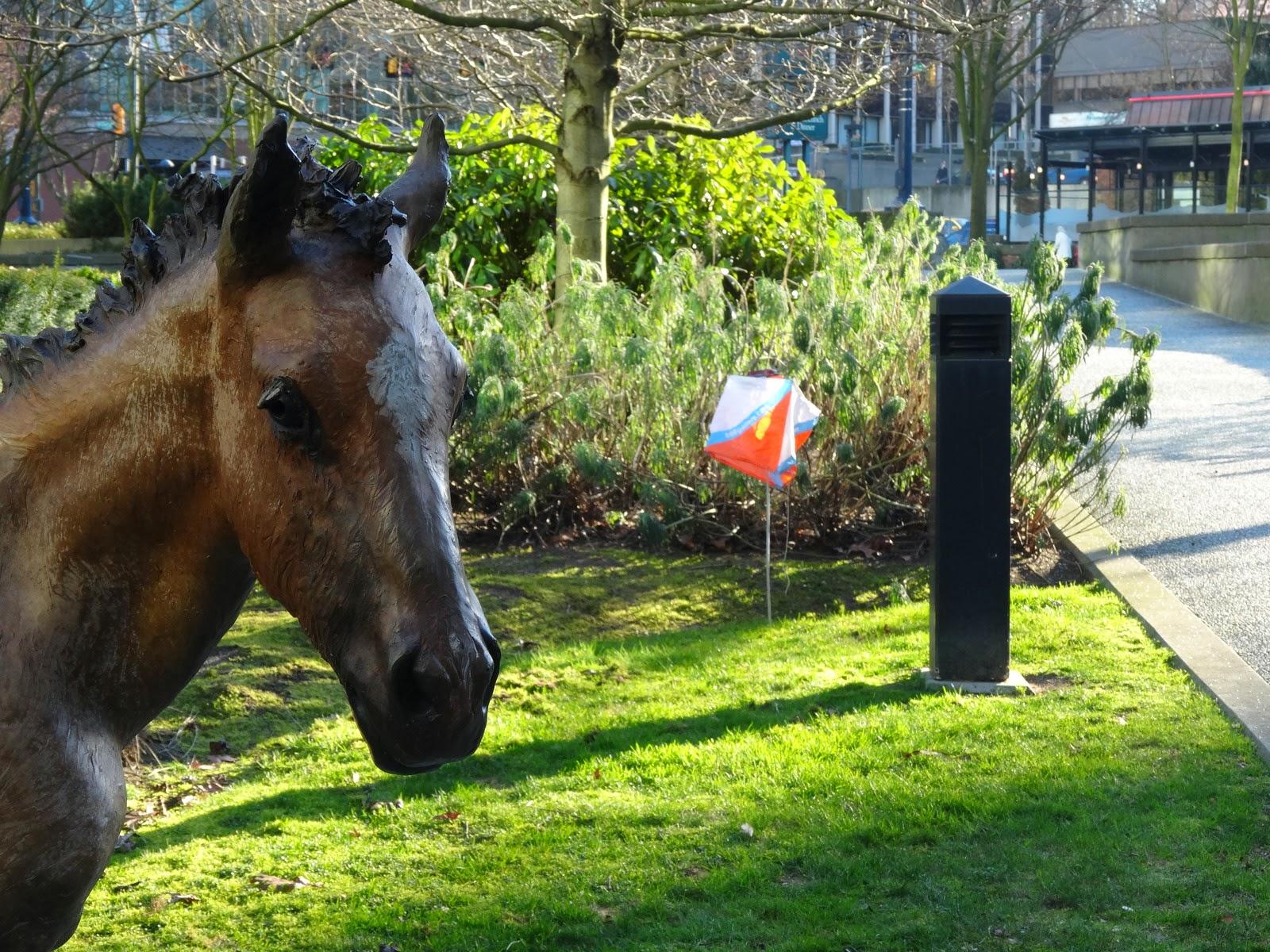 Horse orienteering