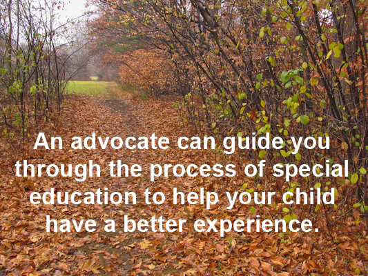 The Role Of Special Education Advocate >> Nesca News Notes The Role Of A Special Education Advocate