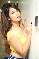 Cute Telugu Actress Shunaya Solanki High Definition Spicy Pos in Yellow Top and Skirt  0067.JPG