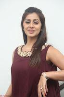 Nikki Galrani in a Brown Shining Sleeveless Gown at Nakshatram music launch ~  Exclusive 008.JPG