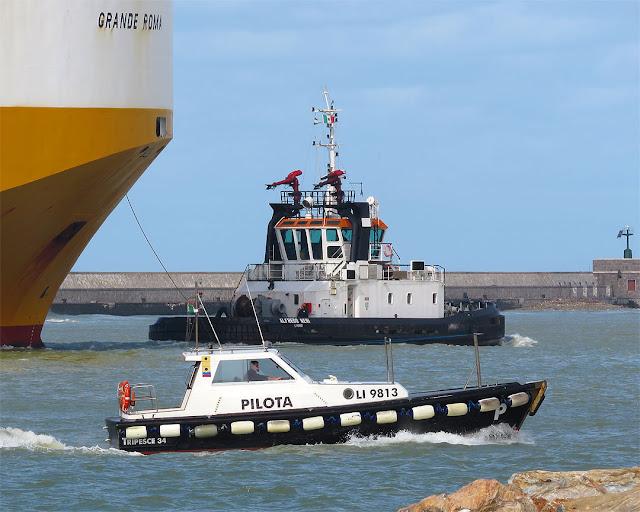 Ro-Ro Grande Roma, IMO 9247936, tugboat Alfredo Neri, IMO 9207106, pilot boat LI9813, port of Livorno