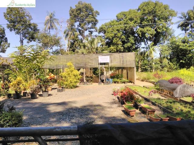 Horto florestal no Jardim Botânico de Timbó