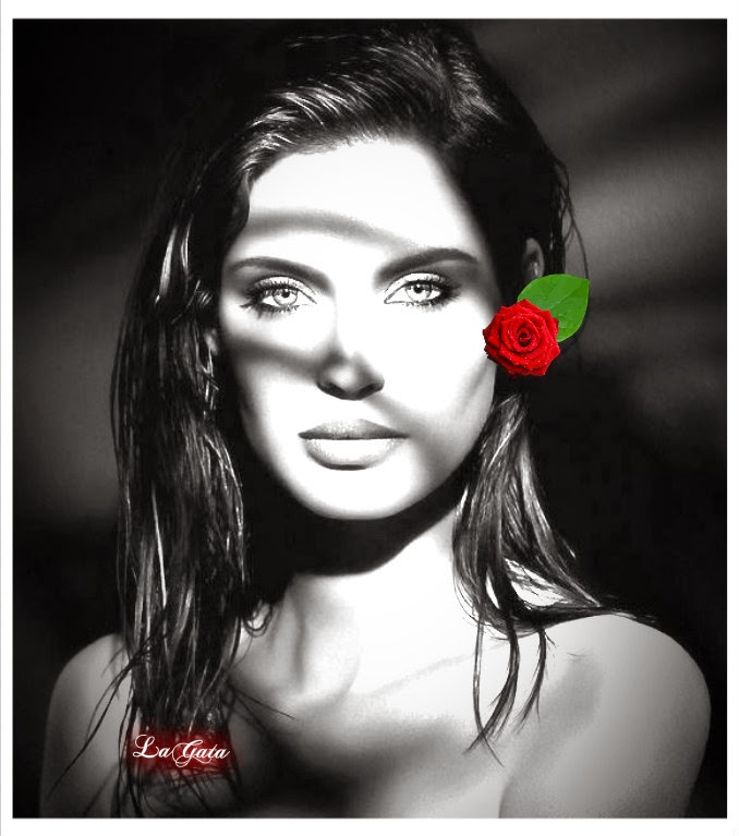 Woman and Red Flowers Pictures.