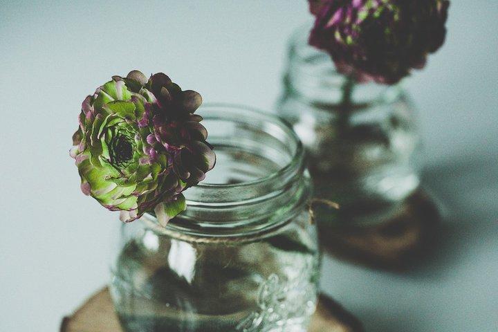 kavanozda çiçek