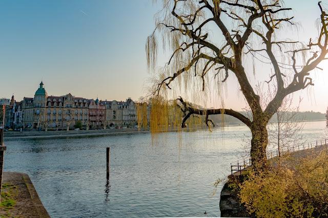 SeeGang Etappe 1 Stadt, Land und See -  Von der historischen Stadt Konstanz über die Blumeninsel Mainau nach Wallhausen. 03