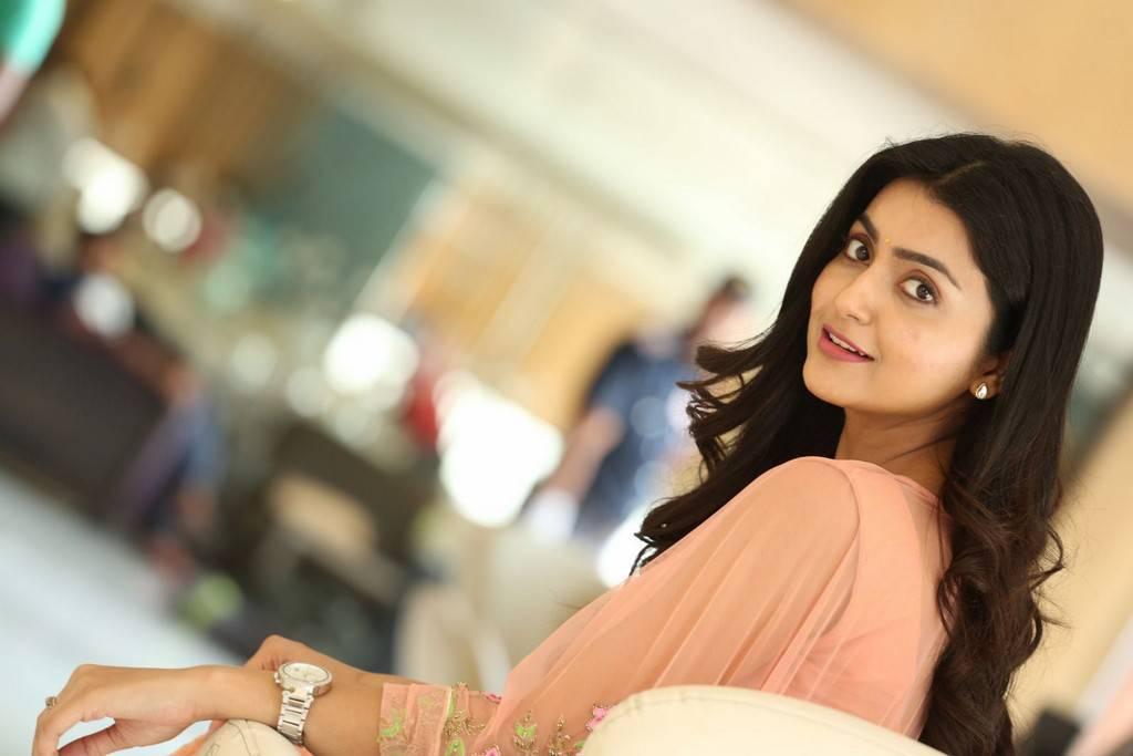 Avantika At Vaisakham Movie Success Meet Stills