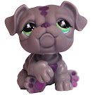 Littlest Pet Shop Collectible Pets Bulldog (#916) Pet