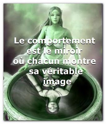 Citation sur le comportement