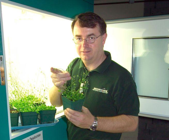 دراسة تتوصل لهندسة نبات الملفوف وراثيًا ليُنتج البلاستيك الحيوي