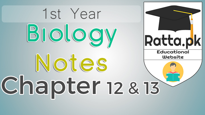 1st Year Biology Notes Chapter 12 and 13 - 11th Class Bio Notes pdf