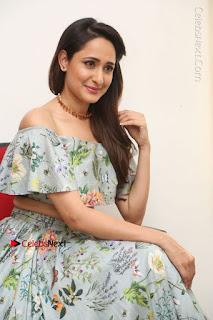 Actress Pragya Jaiswal Stills in Floral Dress at turodu Interview  0146.JPG