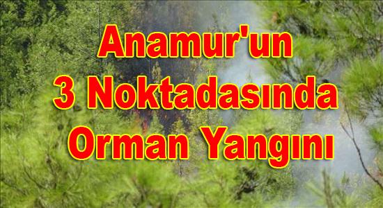 Anamur, Anamur Haber, Anamur Haberci, Anamur Haberleri, Anamur Son Dakika,