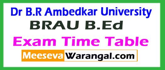 Dr.B.R. Ambedkar University BRAU B.Ed  Exam Time Table