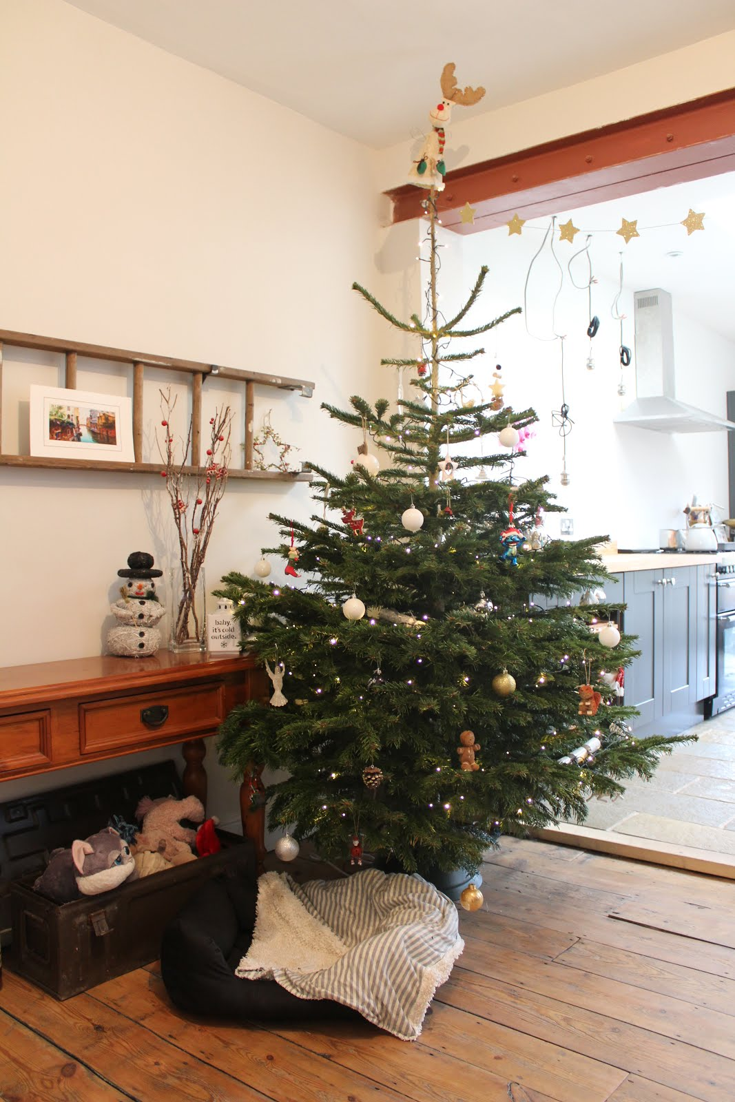 Open Plan Living with Christmas Tree
